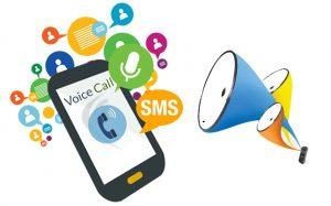 Bulk Voice SMS Service Provider